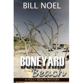 Boneyard-Beach