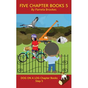 Five-Chapter-Books-5