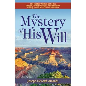 The-Mystery-of-His-Will