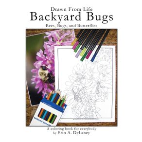 Drawn-From-Life-Backyard-Bugs