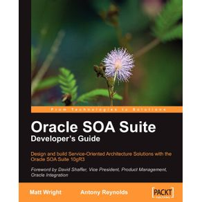 Oracle-Soa-Suite-Developers-Guide