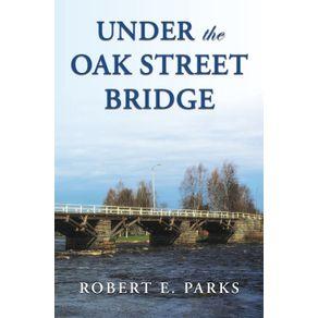 Under-the-Oak-Street-Bridge