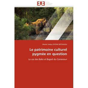 Le-patrimoine-culturel-pygmee-en-question