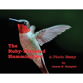 The-Ruby-throated-Hummingbird