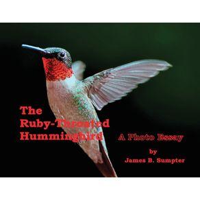 The-Ruby-throated-Hummingbird