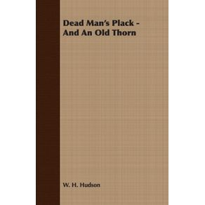Dead-Mans-Plack---And-An-Old-Thorn