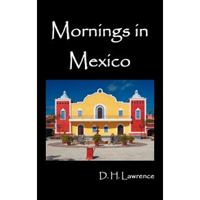 Mornings-in-Mexico