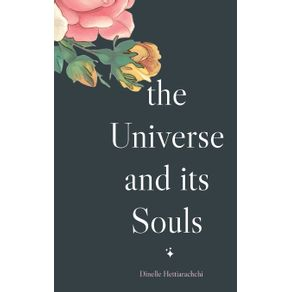 The-Universe-and-its-Souls