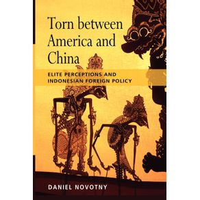 Torn-Between-America-and-China