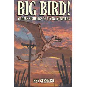 BIG-BIRD----MODERN-SIGHTINGS-OF-FLYING-MONSTERS