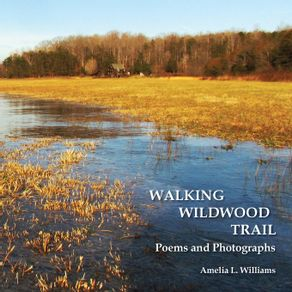 Walking-Wildwood-Trail