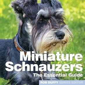 Miniture-Schnauzers