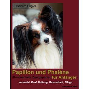 Papillon-Und-Phal-Ne--Kontinentaler-Zwergspaniel--Fur-Anf-Nger