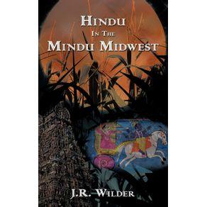 Hindu-In-The-Mindu-Midwest