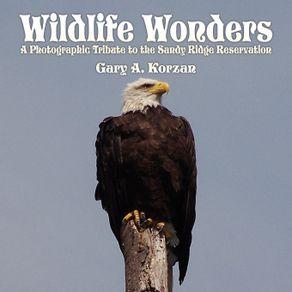 Wildlife-Wonders