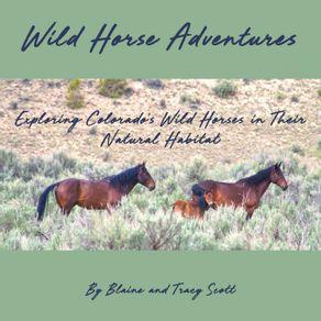 Wild-Horse-Adventures