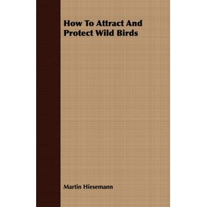 How-To-Attract-And-Protect-Wild-Birds