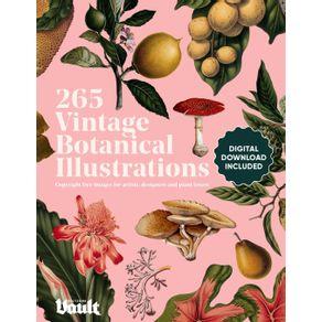 Vintage-Botanical-Illustration