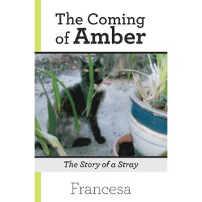 The-Coming-of-Amber