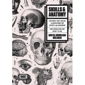 Skulls---Anatomy