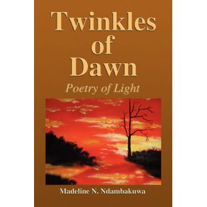 Twinkles-of-Dawn