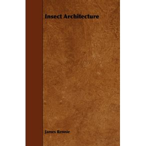 Insect-Architecture