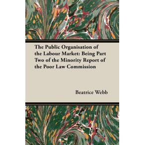 The-Public-Organisation-of-the-Labour-Market