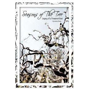 Seasons-of-the-Tree
