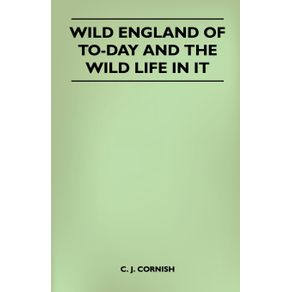 Wild-England-of-To-Day-and-the-Wild-Life-in-It