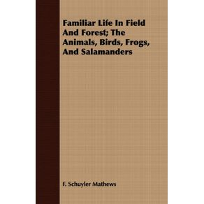 Familiar-Life-In-Field-And-Forest--The-Animals-Birds-Frogs-And-Salamanders