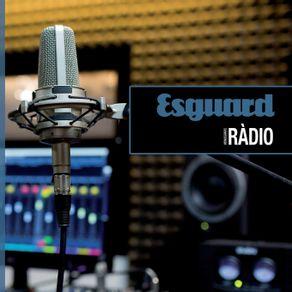 Esguard-Paper-06