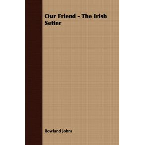 Our-Friend---The-Irish-Setter