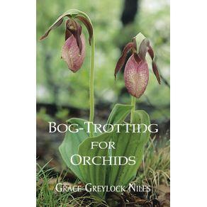 Bog-Trotting-for-Orchids