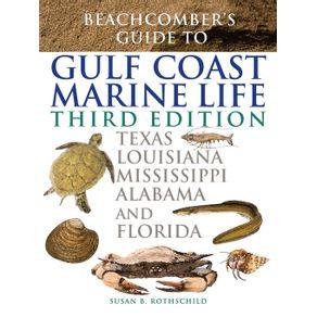 Beachcombers-Guide-to-Gulf-Coast-Marine-Life