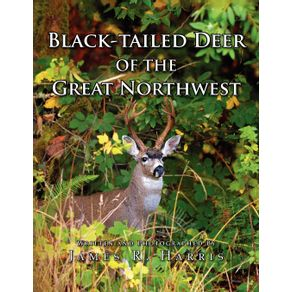 Black-Tailed-Deer-of-the-Great-Northwest