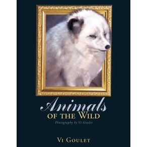 Animals-of-the-Wild