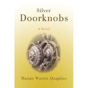Silver-Doorknobs