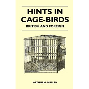 Hints-in-Cage-Birds---British-and-Foreign