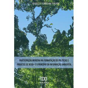 Participacao-indigena-na-formatacao-de-politicas-e-projetos-de-REDD--e-o-principio-da-informacao-ambiental