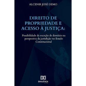 Direito-de-Propriedade-e-acesso-a-Justica--possibilidade-da-excecao-de-dominio-na-perspectiva-da-jurisdicao-no-Estado-Constitucional