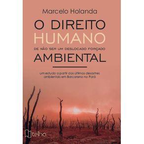 O-direito-humano-de-nao-ser-um-deslocado-forcado-ambiental--Um-estudo-a-partir-dos-ultimos-desastres-ambientais-em-Barcarena-no-Para