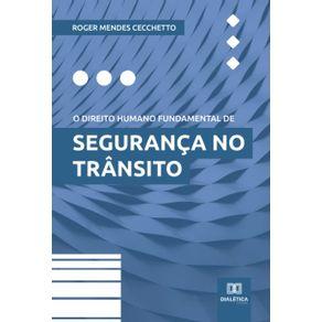 O-direito-humano-fundamental-de-seguranca-no-transito
