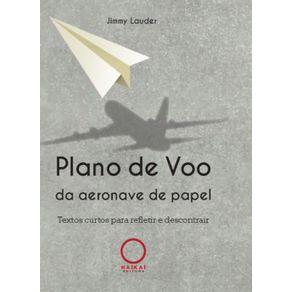 Plano-de-voo-da-aeronave-de-papel