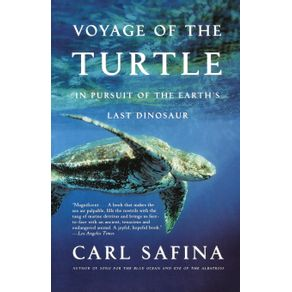 Voyage-of-the-Turtle