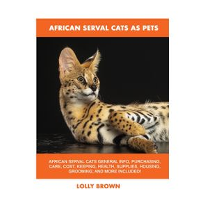 African-Serval-Cats-as-Pets