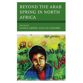 Beyond-the-Arab-Spring-in-North-Africa