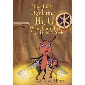 The-Little-Lightning-Bug-Who-Couldnt-Play-Hide-N-Seek