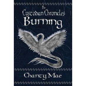 The-Custodian-Chronicles